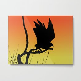 Red-tailed Hawk Taking Flight Silhouette at Sunset Metal Print