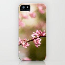Beautiful Light iPhone Case