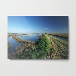 Northern California Wetlands Metal Print