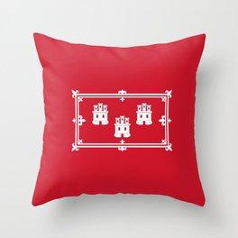 flag of aberdeen (scotland) Throw Pillow