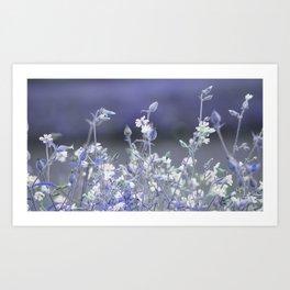 wildflower in the garden Art Print