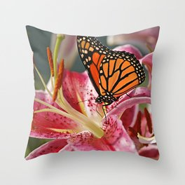 Monarch Butterfly on a Stargazer Lily Throw Pillow