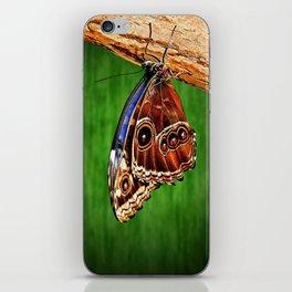 Hanging around. iPhone Skin