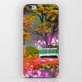 The Bench iPhone Skin