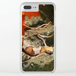 Maple Leaf Noodle Clear iPhone Case