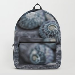 Beach Treasures Snail Shell Collection Backpack