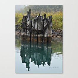 old pilings Canvas Print