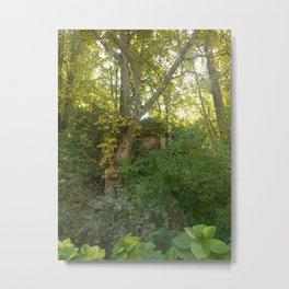 Secret Garden in Ravenna Metal Print