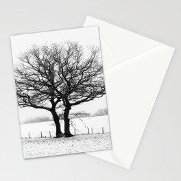Three Winter Oaks Stationery Cards