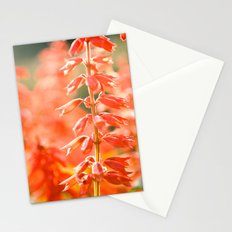 Basking in the Sun Stationery Cards
