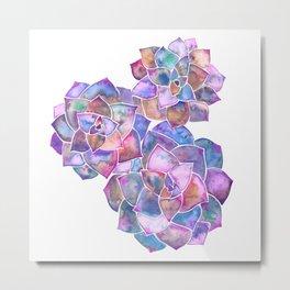 Rosette Succulents – Galaxy Palette Metal Print
