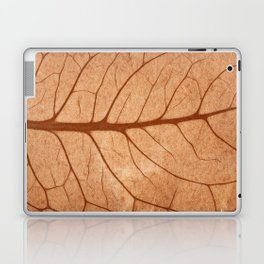 Vintage Sepia Leaf Veins Laptop & iPad Skin