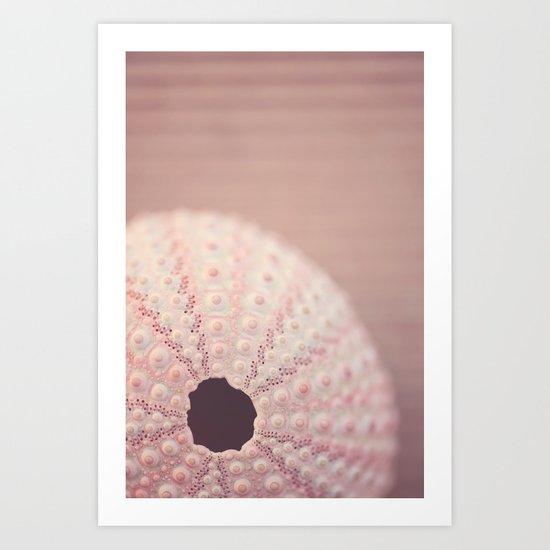 pink urchin Art Print