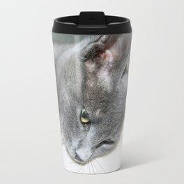 Close Up Of A Grey Kitten Travel Mug