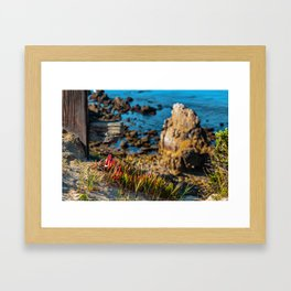The End of the Fence Framed Art Print
