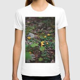 Fairy World T-shirt