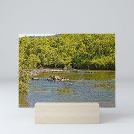 Beautiful river view Mini Art Print