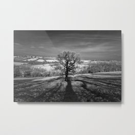 Lone tree over the East Somerset Railway Metal Print