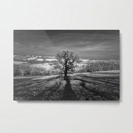 Lone tree over the East Somerset Railway Metal Print