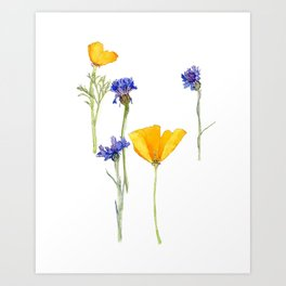 Poppies and Button Flowers Art Print