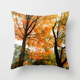 Fall - Beautiful couple Throw Pillow