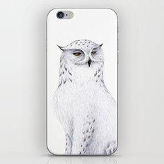 Snowy Fowl II iPhone & iPod Skin