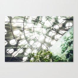 Heliconius sara vs. The Faux Rainforest Canvas Print