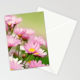 Summer Flowers 275 Stationery Cards