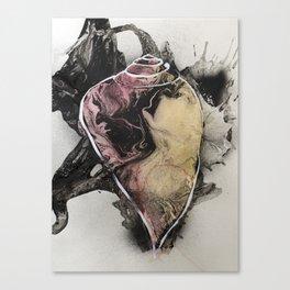 Shell #1 Canvas Print