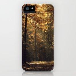 Autumn light - vertical iPhone Case