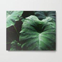 Airlie green Metal Print