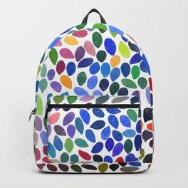 rain 19 Backpack