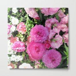 Vibrant Pink Chrysanthemums Metal Print