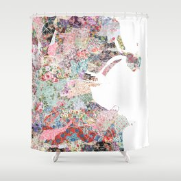 Dublin map Shower Curtain