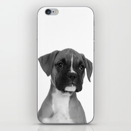 Boxer Pup iPhone Skin