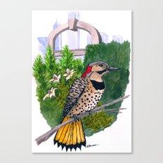 Northern Flicker in Grant Park Rose Garden Canvas Print