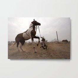 The Dancing Horse Metal Print