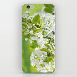 White cherry blossoms romance iPhone Skin