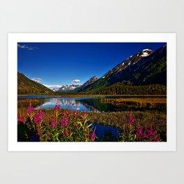 Chugach National Forest Art Print