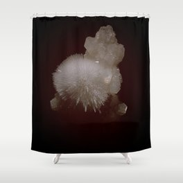 Celestial Gods Shower Curtain