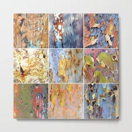 Rainbow Bark Metal Print