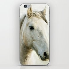 White Horse Portrait iPhone & iPod Skin