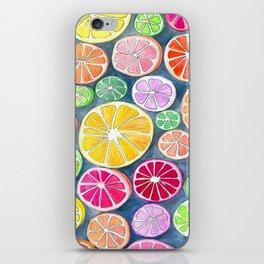 Citrus Painting iPhone Skin