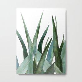 Agave leaves Metal Print
