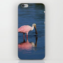 Roseate Spoonbill at Ding III iPhone Skin