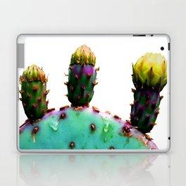 Three Cactus Flowers Laptop & iPad Skin
