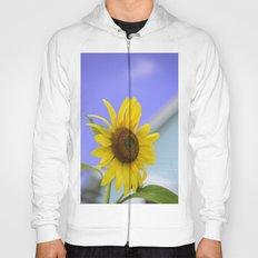 Summer Cottage Sunflower Hoody