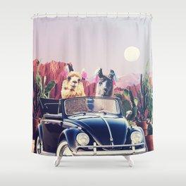 Llamas on the road Shower Curtain