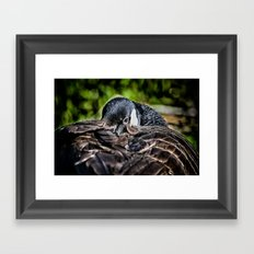 I Am Watching You Framed Art Print