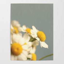 007 Flower Poster